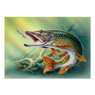 Pike-Fischen-Druck Posterdruck
