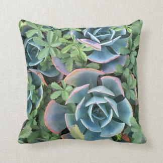 Pillow die schönen Kakteen, die in Grün gemischt Kissen