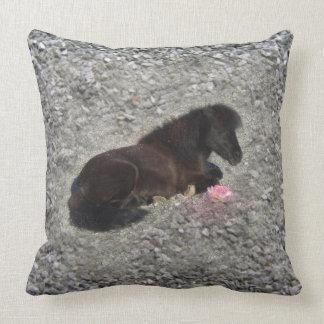 Pillow Pferdepony MiniShetty tierisches schwarzes Zierkissen