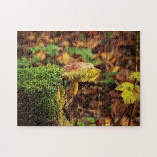 Pilz auf einem Treestump Puzzle