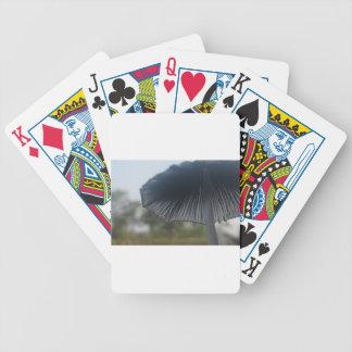Pilz Bicycle Spielkarten