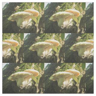 Pilz, der im Baum wächst Stoff