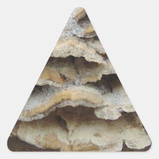 Pilze im Winter Dreieckiger Aufkleber