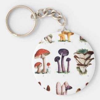 Pilze Schlüsselanhänger