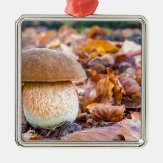 Pilzeichhörnchenbrot mit Blätter in fall.JPG Silbernes Ornament