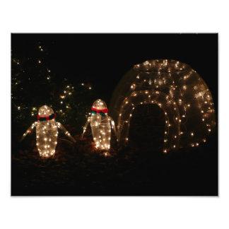 Pinguin-Feiertags-Licht-Anzeige Fotodruck