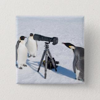 Pinguin-Fotograf - Knopf Quadratischer Button 5,1 Cm