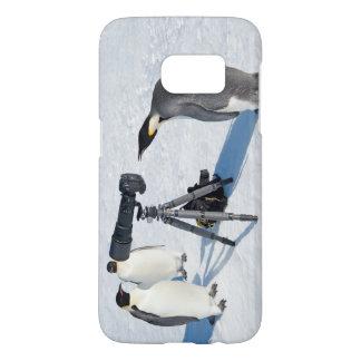Pinguin-Paparazzi - Samsung rufen an