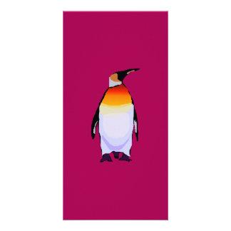 Pinguin tiefrot fotogrußkarten