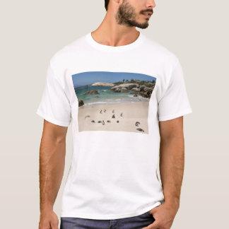 Pinguine am Flussstein-Strand, Simons Stadt, Süd T-Shirt