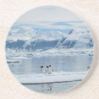 Pinguine auf einem Eisberg Getränkeuntersetzer
