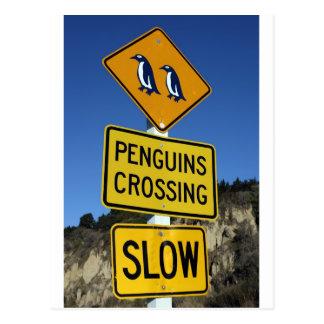 Pinguine, die gelbes Verkehrsschild kreuzen Postkarte