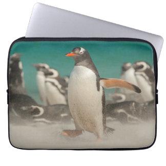 Pinguingruppe auf Strand, Falkland Laptop Sleeve