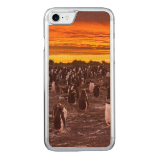 Pinguinkolonie am Sonnenuntergang, Falkland Carved iPhone 8/7 Hülle