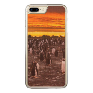 Pinguinkolonie am Sonnenuntergang, Falkland Carved iPhone 8 Plus/7 Plus Hülle