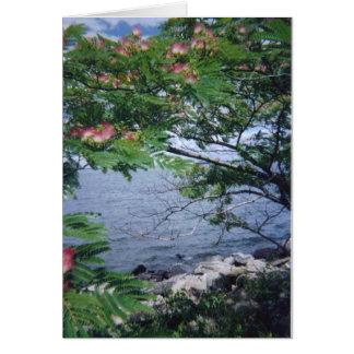pinktreewaterview 001 karte