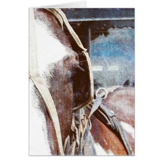 Pinto-amisches Buggy-Pferd Karte