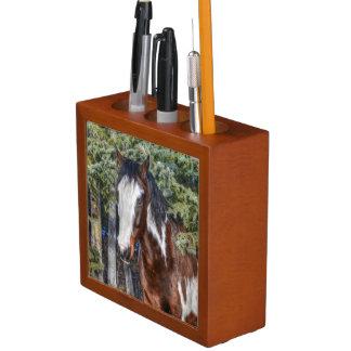 Pinto-Farben-Stallions-u. Immergrün-Bäume Stifthalter