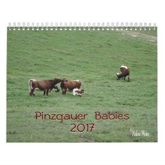 Pinzgauer Babys 2017 Kalender-fertigen Jahr Kalender