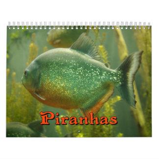 Piranhas-Wandkalender Abreißkalender