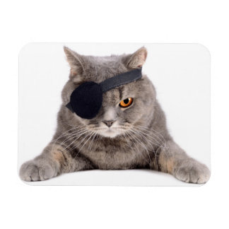 Piraten-Katze Rechteckiger Fotomagnet