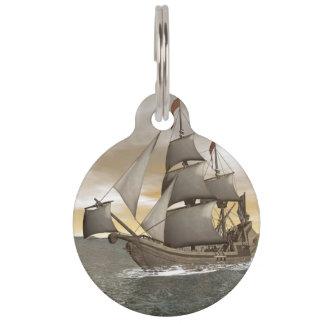 Piratenschiffsverlassen - 3D übertragen Tiermarke