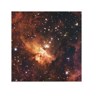 Pismis 24 die braune Sterne NASA Leinwanddruck