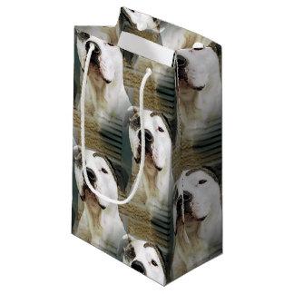 Pitbull-förmiger Knochen Kleine Geschenktüte