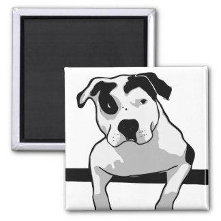 Pitbull-Knochen-Grafik Quadratischer Magnet