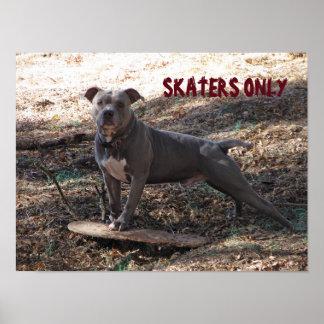 Pitbull mit Skateboard-Skater-nur Plakat