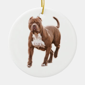 Pitbullbraun Keramik Ornament