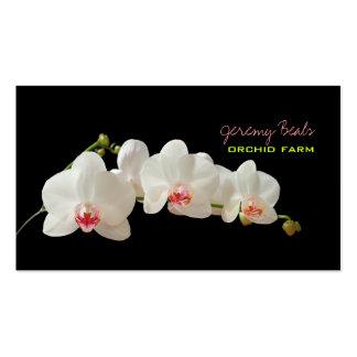 PixDezines Orchidee diy Hintergrund color♥♥♥ Visitenkarte