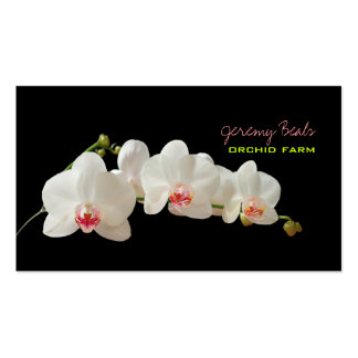 PixDezines Orchidee/diy Hintergrund color♥♥♥ Visitenkarte
