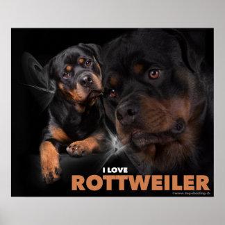 Plakat Rottweiler