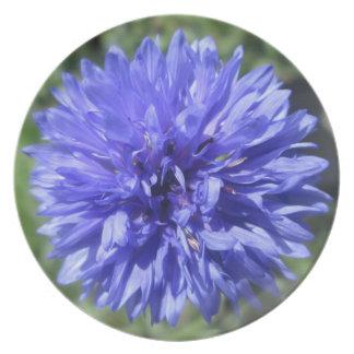 Platte - der Knopf des Cornflower-blauen Flacher Teller