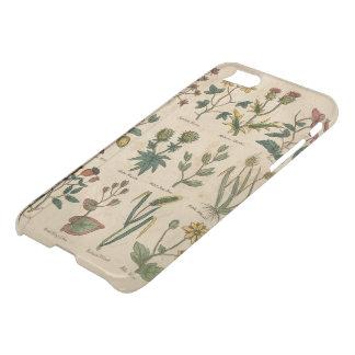 Platte der Pflanzen iPhone 8/7 Hülle