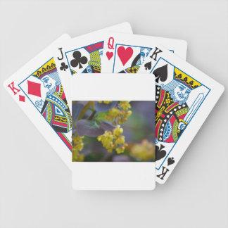 Plattformkarten Bicycle Spielkarten