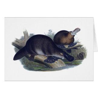 Platypus auf einer Klotz-Illustration Karte