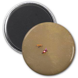 PLATYPUS U. NATIONALPARK AUSTRALIEN DER RUNDER MAGNET 5,1 CM