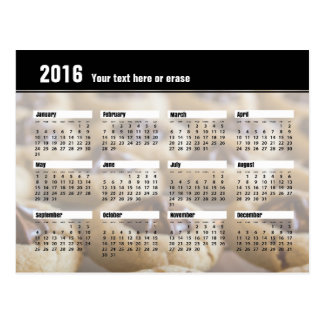 Plätzchen-Kalender-Postkarte 2016 Postkarte