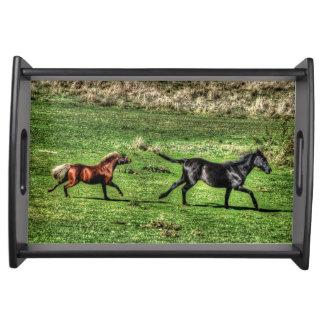 Playful Ranch-Pferdc$pferd-liebhaber Natur-Foto Tablett