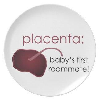 Plazenta, der erste Zimmergenosse des Babys Melaminteller