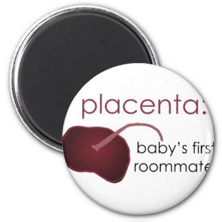 Plazenta, der erste Zimmergenosse des Babys Runder Magnet 5,1 Cm