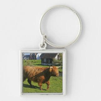Plockton, Schottland. Haarigen Coooos (Kühe) Hande Silberfarbener Quadratischer Schlüsselanhänger
