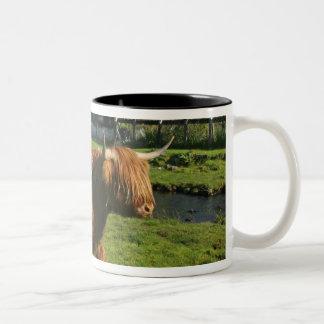 Plockton, Schottland. Haarigen Coooos (Kühe) Zweifarbige Tasse