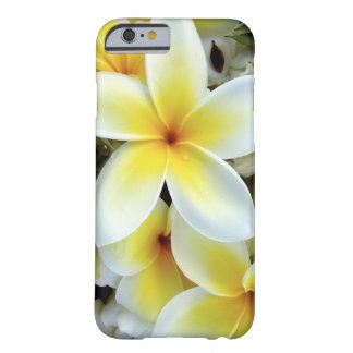 Plumeria iPhone 6 Fall Barely There iPhone 6 Hülle