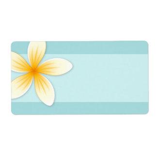 Plumeriafrangipani-Blume auf blauem freiem Raum