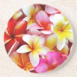 Plumeriafrangipani-Hawaii-Blume besonders angefert Bierdeckel