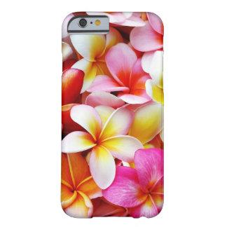 Plumeriafrangipani-Hawaii-Blume besonders Barely There iPhone 6 Hülle