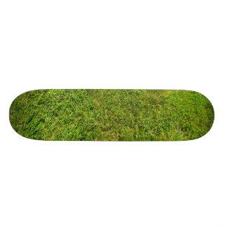Plüsch-grünes Skateboard Bretter